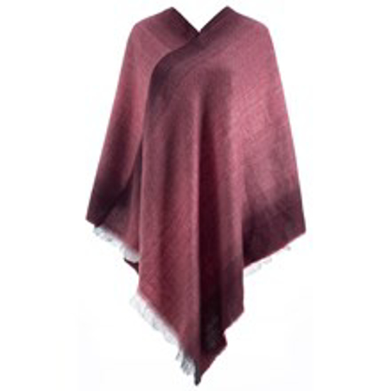 Picture of Poncho - Wine